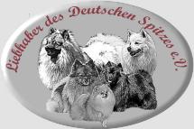 Logo-Clip-Verein-evkopie